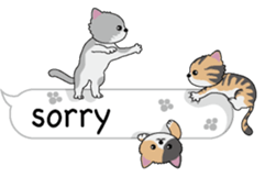 Cat Cat Cat English Version Stickers Pack messages sticker-11