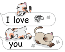 Cat Cat Cat English Version Stickers Pack messages sticker-3