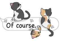 Cat Cat Cat English Version Stickers Pack messages sticker-6