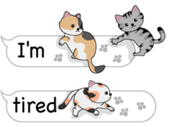 Cat Cat Cat English Version Stickers Pack messages sticker-5