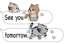 Cat Cat Cat English Version Stickers Pack messages sticker-9