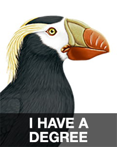 iBird Stickers messages sticker-6