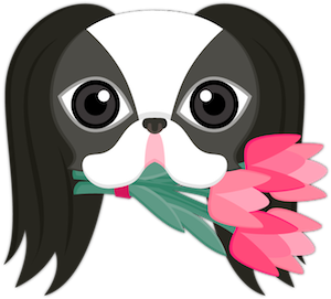 Black White Japanese Chin Stickers for iMessage messages sticker-2
