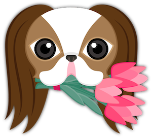 Brown White Japanese Chin messages sticker-2