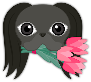 Black Japanese Chin messages sticker-2