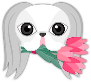 White Japanese Chin messages sticker-2