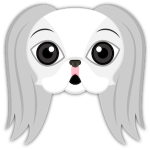 White Japanese Chin messages sticker-0