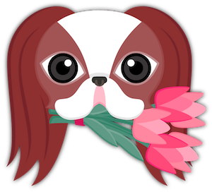 Red Sable Japanese Chin messages sticker-2