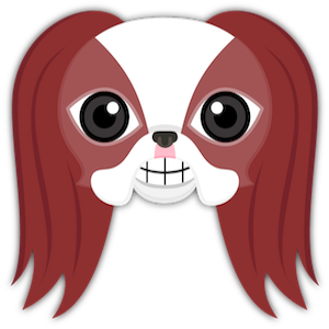 Red Sable Japanese Chin messages sticker-0