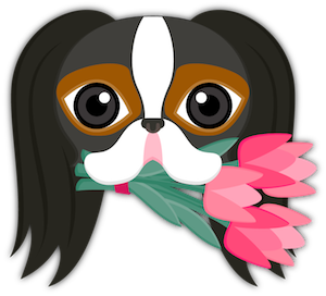 Tri Color Japanese Chin messages sticker-2