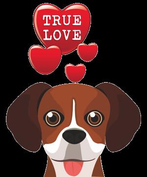 Valentine Dogs messages sticker-5