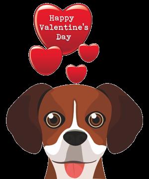 Valentine Dogs messages sticker-2
