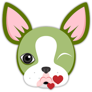 St Patrick's Boston Terrier messages sticker-0