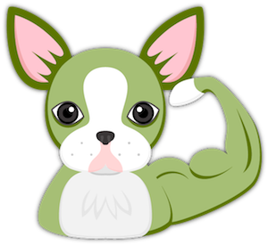 St Patrick's Boston Terrier messages sticker-1