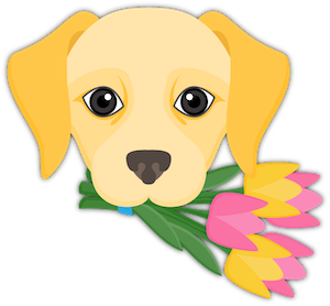 Yellow Labrador Emoji messages sticker-2
