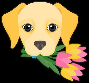 Yellow Labrador Retriever Stickers messages sticker-2