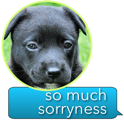 iSorry: a·PAW·logy Stickers messages sticker-1