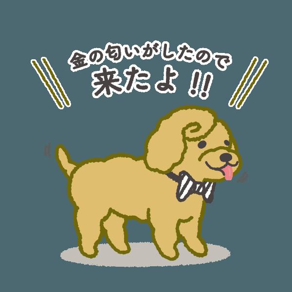 お金大好き!1ドル, 2ドル, プードルさん! messages sticker-0
