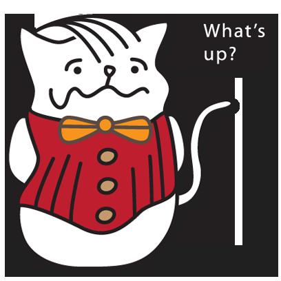 Rocket Cat Stickers messages sticker-4