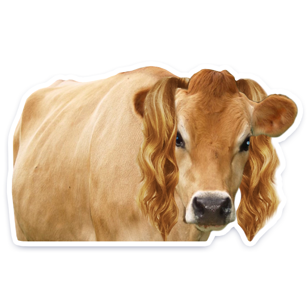 DairyPure Brand Milk Stickers messages sticker-9