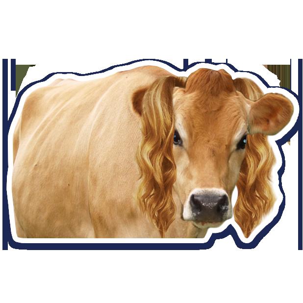 DairyPure Brand Milk Stickers messages sticker-9