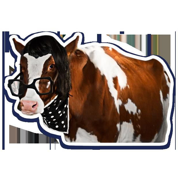 DairyPure Brand Milk Stickers messages sticker-3