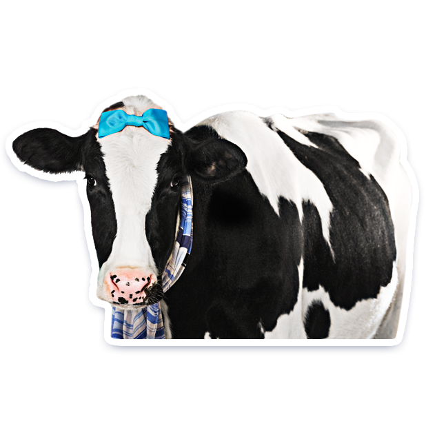 DairyPure Brand Milk Stickers messages sticker-11