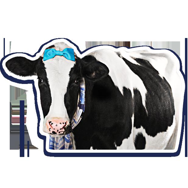 DairyPure Brand Milk Stickers messages sticker-11