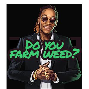 Wiz Khalifa's Weed Farm messages sticker-7