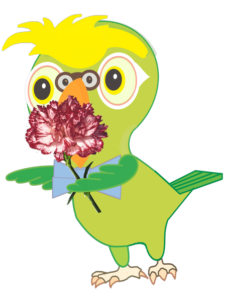 BillyStickers - Animated Parrot Fun Stickers messages sticker-0