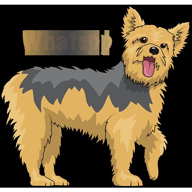 Yorkiemoji - Yorkie Emoji & Stickers messages sticker-10