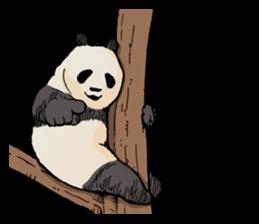 Funny Animals Laugh Emoji messages sticker-7