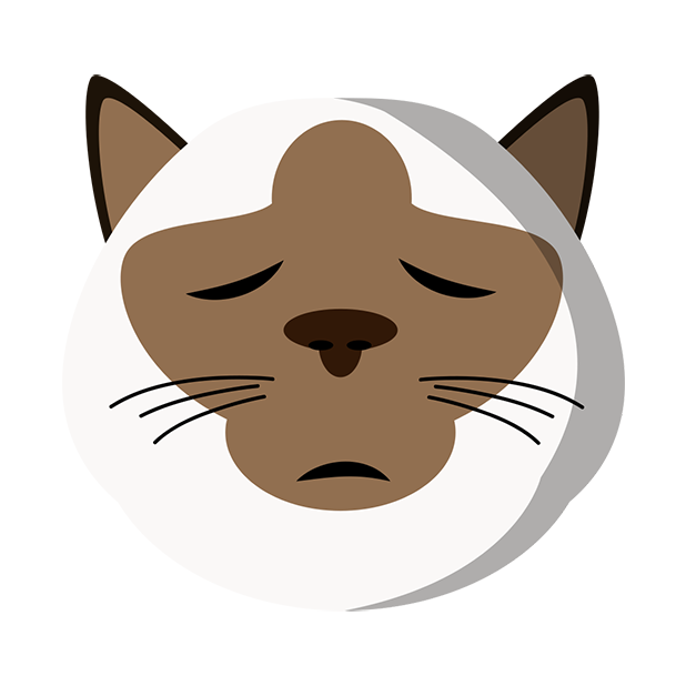 MeowMoji - Hilarious Cat Emojis & Stickers! messages sticker-11