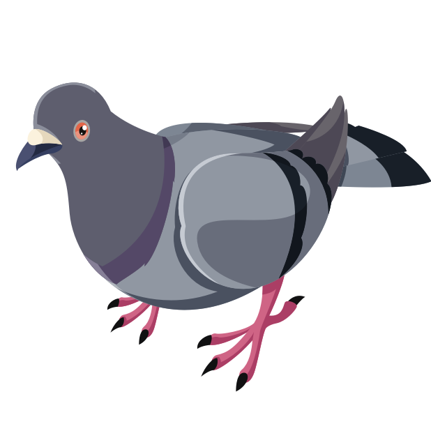 Trash Birds - Funny Realistic Pigeons messages sticker-0