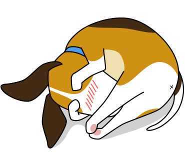 Beagle sticker.Dog Stickers for iMessage messages sticker-9