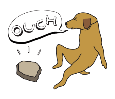 Golden Retriever Stickers for iMessage  Daily Use messages sticker-9