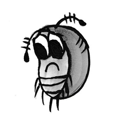 Sammy the Pillbug Stickers Lite messages sticker-1