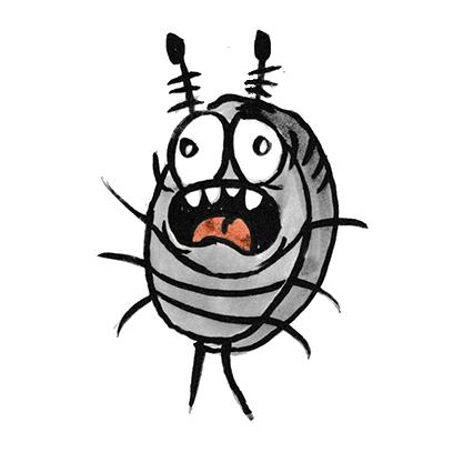 Sammy the Pillbug Stickers Lite messages sticker-10