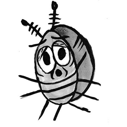 Sammy the Pillbug Stickers Lite messages sticker-8