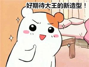 撩哥百图-飞蚂蚁出品 messages sticker-7