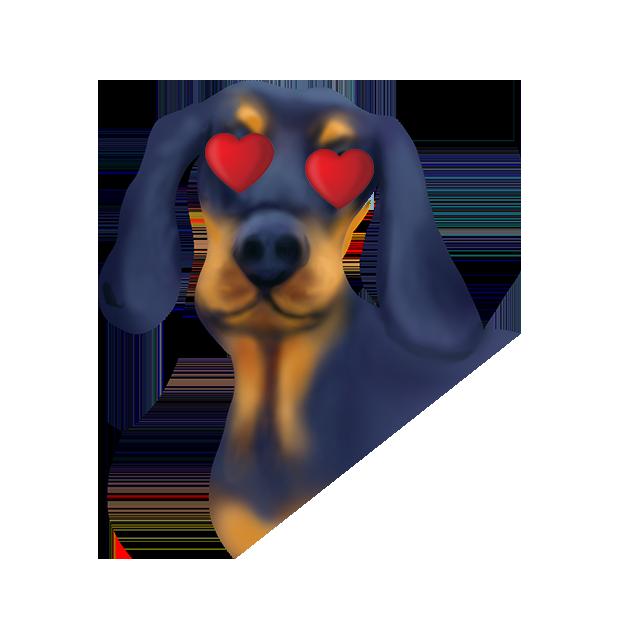 DachsMoji - Dachshund Emoji messages sticker-5