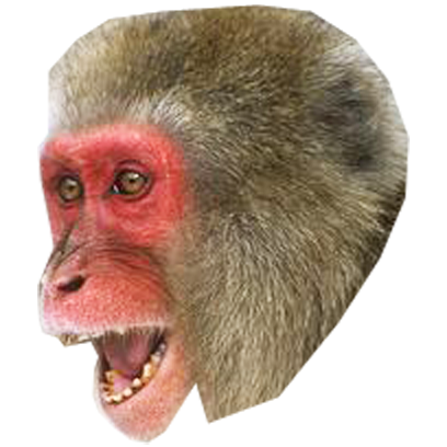 Monkey Head messages sticker-11