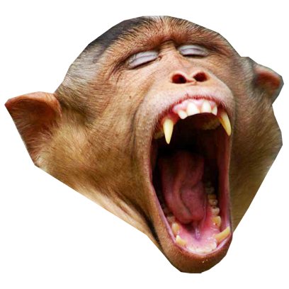Monkey Head messages sticker-9