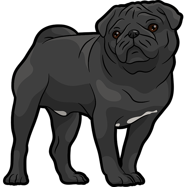 iPugmoji - Pug Emoji & Stickers messages sticker-8
