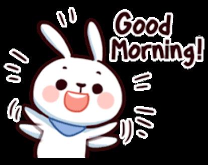 Cool Little Rabbit messages sticker-11