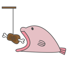 Blobfish The Ugliest Animal Sticker messages sticker-6