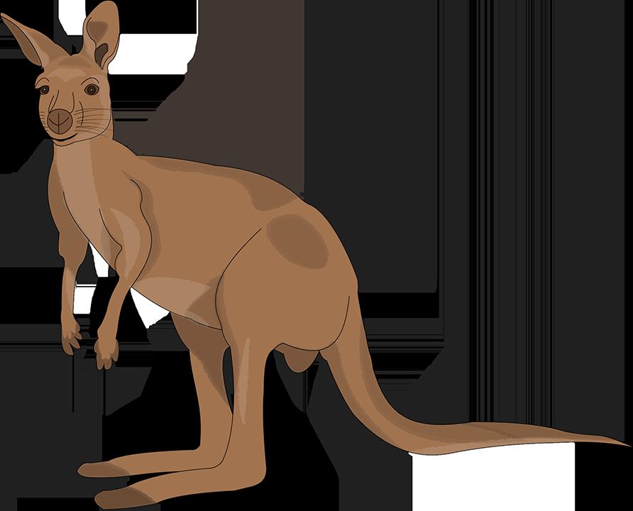 Little Australia messages sticker-2