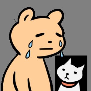 毎日くま&ねこステッカー Everyday Kuma & Neko Sticker messages sticker-6