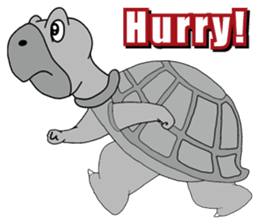 Grey Turtle messages sticker-10