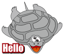 Grey Turtle messages sticker-11